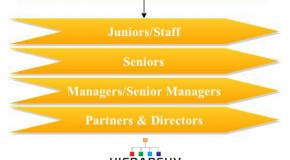 Ernst &Young Career Hierarchy
