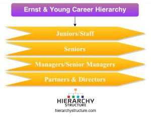ernst & young career hierarchy