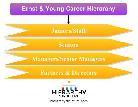 Ernst &Young Career Hierarchy Chart | Hierarchystructure com