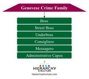genovese crime family