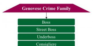 genovese crime family