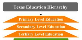 texas education hierarchy