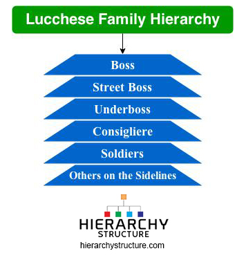 lucchese family hierarchy