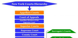 New York Courts Hierarchy