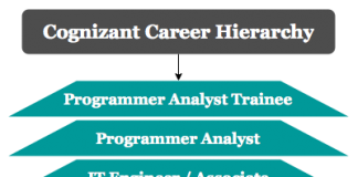 Cognizant career hierarchy