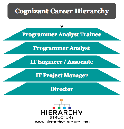 Cognizant Career Hierarchy Chart | Hierarchystructure com