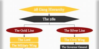 28 Gang Hierarchy