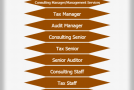 Audit Job Hierarchy