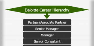 Hierarchy of Deloitte Career Archives - Hierarchy Structure