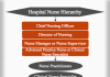 Hospital Nurse Hierarchy