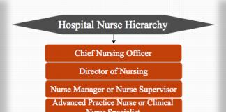 Hospital Nurse Hierarchy