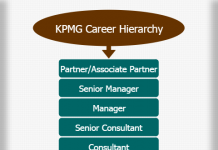 Deloitte Career Hierarchy chart | Hierarchystructure com