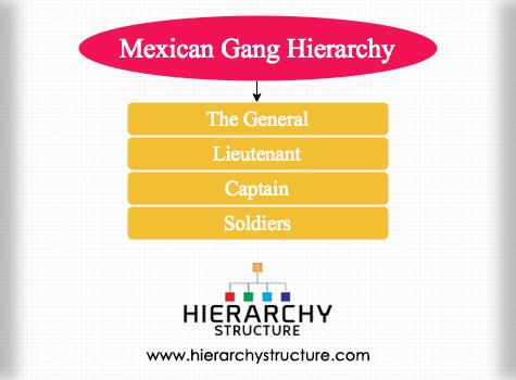 Mexican Gang Hierarchy