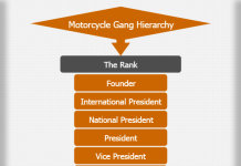 Motorcycle Gang Hierarchy