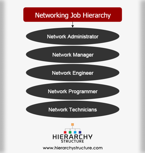 Networking job hierarchy