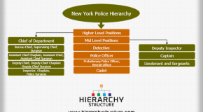 New York Police Hierarchy