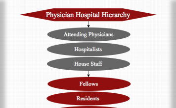 Physician Hospital Hierarchy