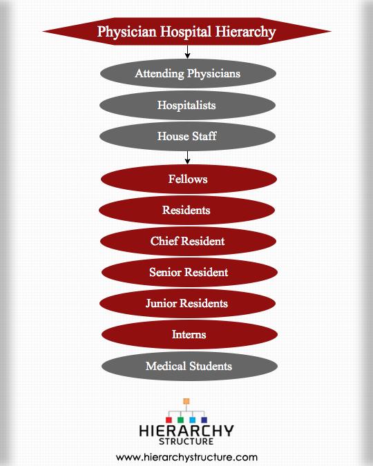 PhysicianHospitalHierarchy