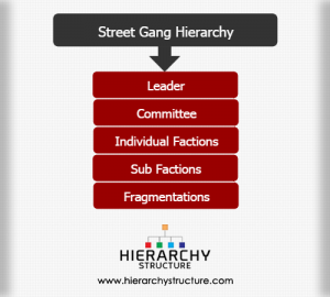 Street Gang Hierarchy