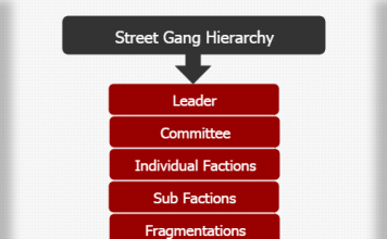 Street Gang Hierarchy