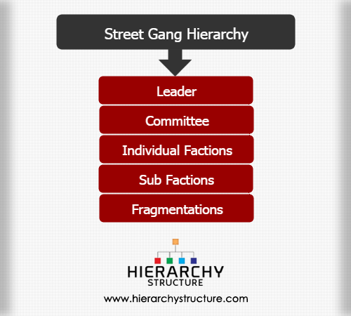 gang hierarchy A gang is a group of people with a common identity and purpose although most modern gangs revolve around  often with clear leaders and a hierarchy,.