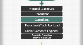 TCS Technical Hierarchy