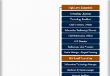 Technical Team Hierarchy