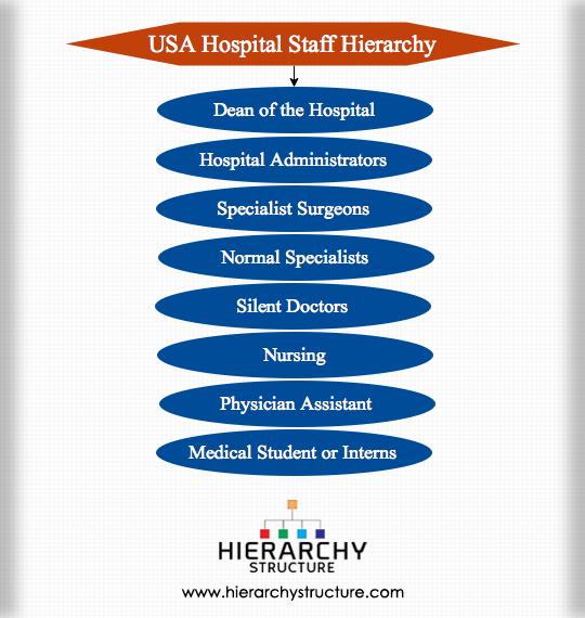 USA Hospital Staff Hierarchy