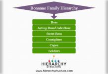 Bonanno family hierarchy