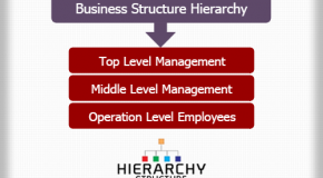 Business Structure Hierarchy