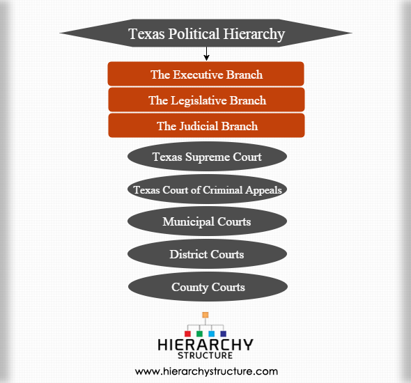 Texas political hierarchy