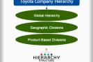 Toyota Company Hierarchy