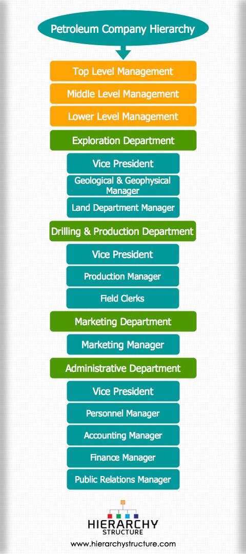 petroleum company hierarchy structure