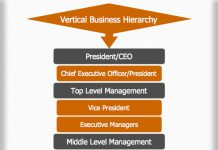 Vertical Business Hierarchy
