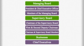 Siemens Management Hierarchy