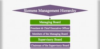 Siemens Management Hierarchy