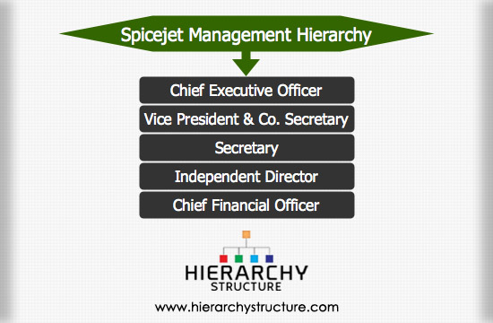 Spicejet Management Hierarchy