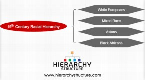 19th Century Racial Hierarchy
