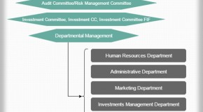 Asset Management Hierarchy
