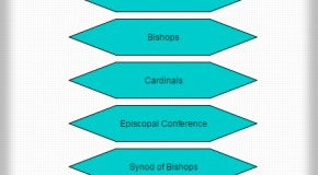 Australian Catholic Church Hierarchy