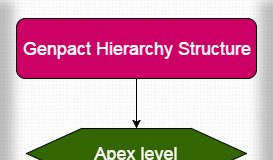 Genpact Hierarchy Structure
