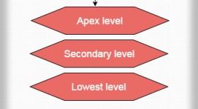 Magazine Company's Hierarchy