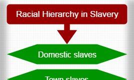 Racial Hierarchy in Slavery