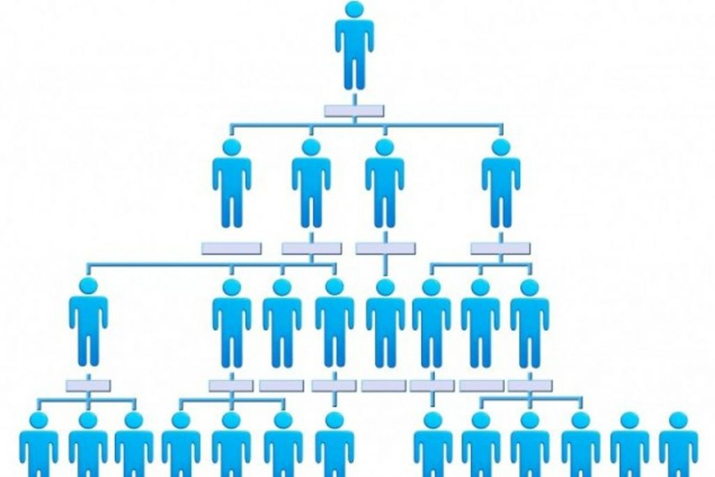 Startup Organizational Structure: Which is Better? Horizontal? Or Hierarchical?