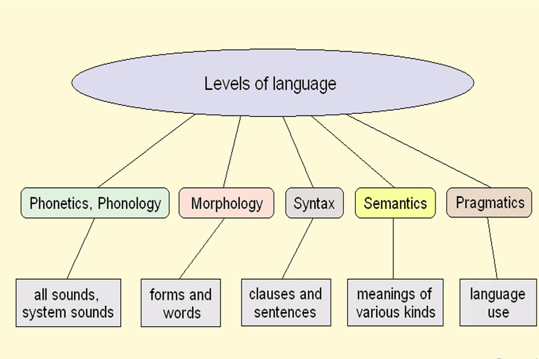The Human Language