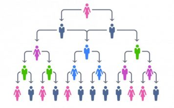 What Are The Advantages of a Hierarchical Organizational Structure