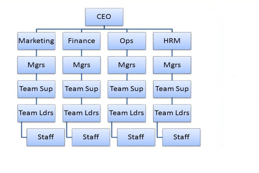hierarchical structure tall essay Hierarchical organization is also known as a 'tall structure' it is characterized by a  large number of layers between top management and the.