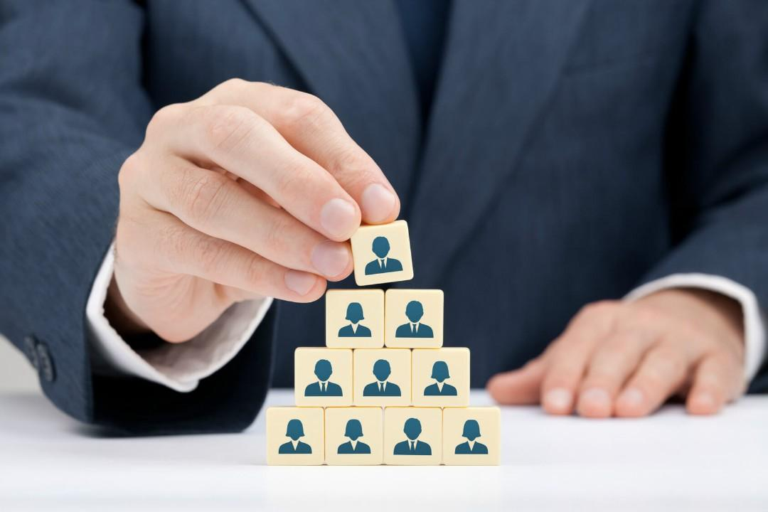 explain the functions of different organisational structures nvq
